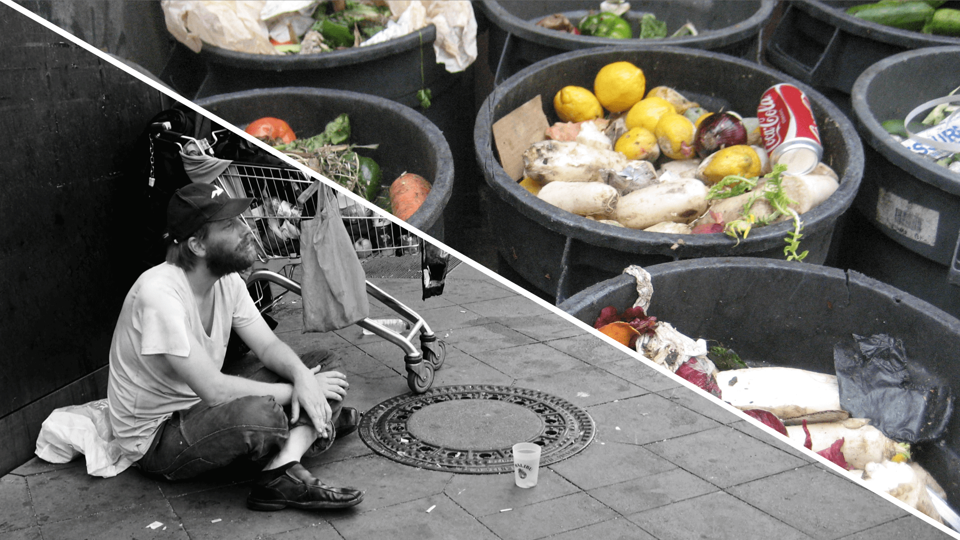 food waste and food poverty